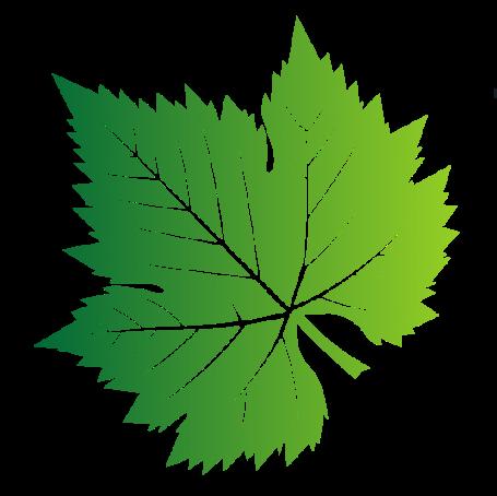 Green vermont leaf