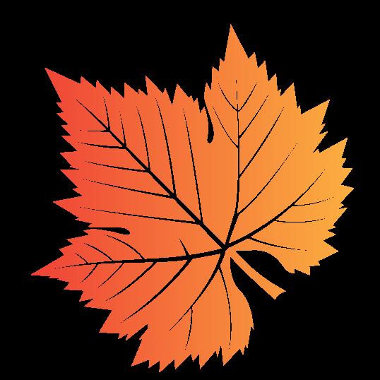 Orange Vermont Leaf