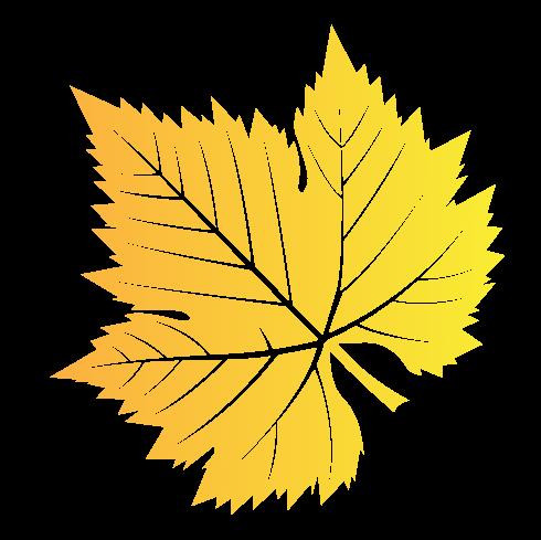 Yellow Vermont Leaf